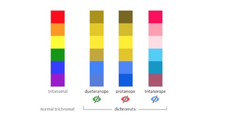 color blindness and email accessibility